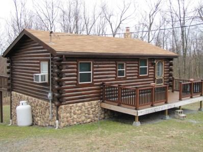 127 Turkey Trail Road, Beech Creek, PA 16822 - #: WB-83939