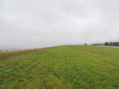 Middle Road, Woodward, PA 16882 - #: WB-83954