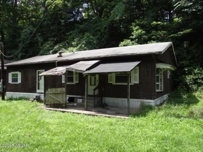 111 Green Hill Road, Roaring Branch, PA 17765 - #: WB-84810
