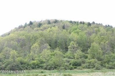 North Fork Road, Westfield, PA 16950 - #: WB-85277