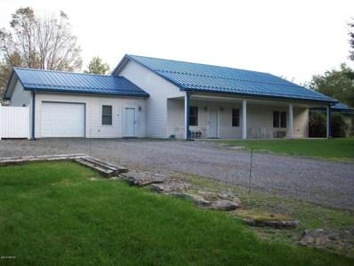 25 Forest Glen Lane, Muncy Valley, PA 17758 - #: WB-85630