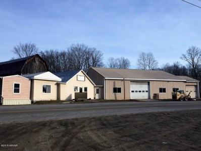 980 Locey Creek Road, Middlebury Center, PA 16935 - #: WB-86105