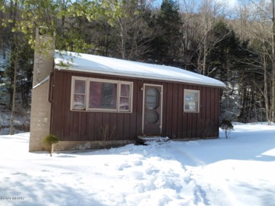 1067 Norris Brook Road, Middlebury Center, PA 16935 - #: WB-89620