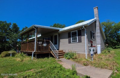 89 Lighthouse Lane, Middleburg, PA 17842 - #: WB-90279
