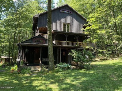 221 Black Bear Lane, Spring Mills, PA 16875 - #: WB-90409