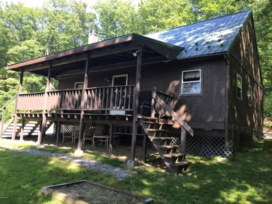 329 Snow Shoe Mountain Forest Road, Snow Shoe, PA 16874 - #: WB-90485