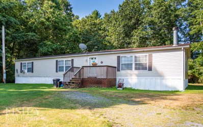 213 Haven Pines Road, Mill Hall, PA 17751 - #: WB-90808