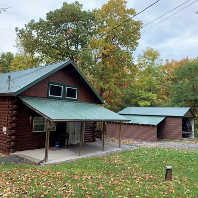 240 Bald Eagle Forest Road, Blanchard, PA 16826 - #: WB-91390