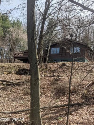 93 Keystone Mountain Park, Muncy Valley, PA 17758 - #: WB-91961