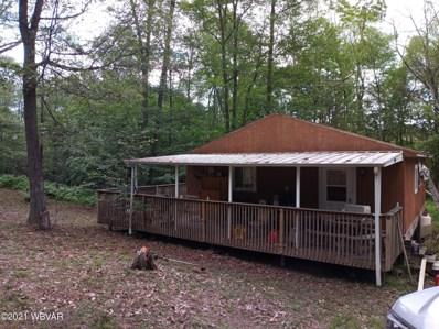 132 Bear Ridge Road, Beech Creek, PA 16822 - #: WB-93009