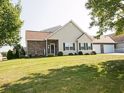 117 Clearwater Drive, Franklin Twp, PA 16117 - #: 1318726