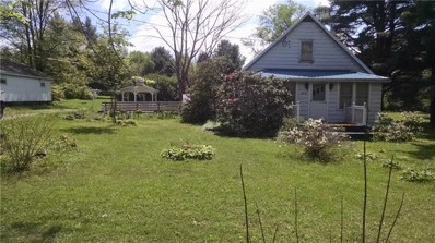 39710 State Route 66 Marienville,Pa., Marienville, PA 16239 - #: 1322351
