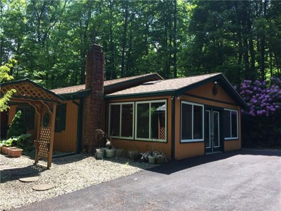 761 West Shore Trail Ext, Indian Lake Boro, PA 15563 - #: 1329157