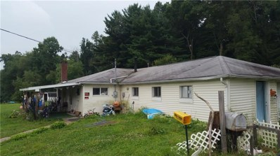 42 Old Dinner Bell Rd, Wharton Twp, PA 15437 - #: 1351040