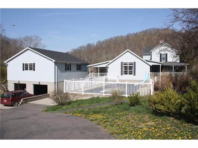 669 Deep Valley Road, New Freeport, PA 15352 - #: 1358754