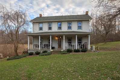 174 Mccloy Road, South Beaver Twp, PA 15010 - #: 1371234