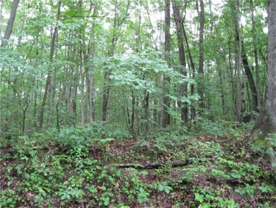 00 Grannis Road, russell, PA 16345 - #: 1378957