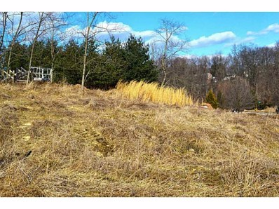 Lot 168 Birch Drive, Houston, PA 15342 - #: 1384012