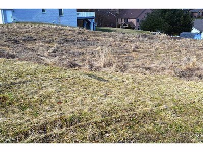 Lot 158 Spruce Lane, Houston, PA 15342 - #: 1386553