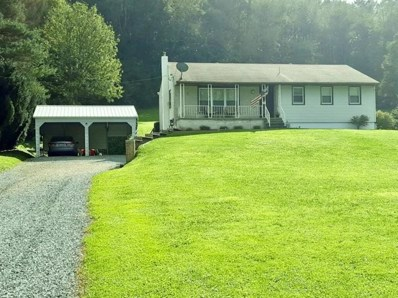 487 Wissinger Hollow Road, Johnstown, PA 15904 - #: 1405162