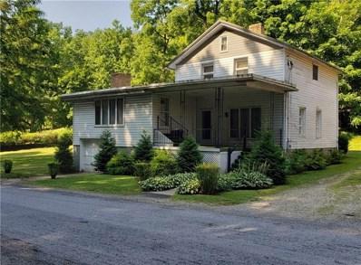 29 Douglas Street, 15729, PA 15729 - #: 1411653