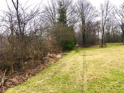 00 Tipperary Rd, Pine Twp\/Heilwood, PA 15714 - #: 1440076