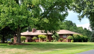 450 Conestoga Trail, Pulaski Twp - LAW, PA 16143 - #: 1445001