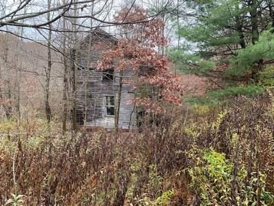 938 Jones Rd, Brady\'s Bend Twp, PA 16041 - #: 1475225