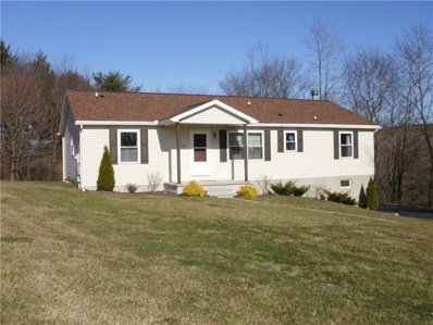 196 Expresso Dr, Somerset Twp, PA 15541 - #: 1490551