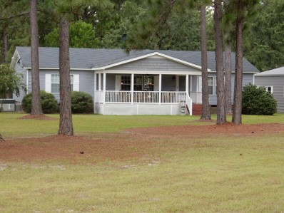 North Windsor Road, Windsor, SC 29856 - #: 103947