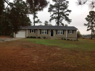 148 Millrace Circle, Aiken, SC 29805 - #: 105163