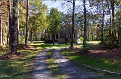 613 Battle Cut Road, Ridgeland, SC 29936 - #: 164371