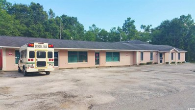 8899 Highway 701 South, Conway, SC 29527 - #: 1812488