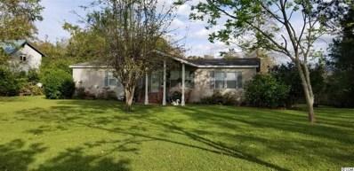 8811 Henrietta Bluff Rd., Conway, SC 29527 - #: 1821976