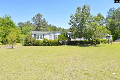 724 Cannon Place, Gilbert, SC 29054 - #: 447477