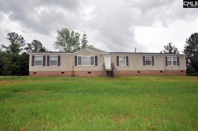 226 George Lane, Newberry, SC 29108 - #: 449077