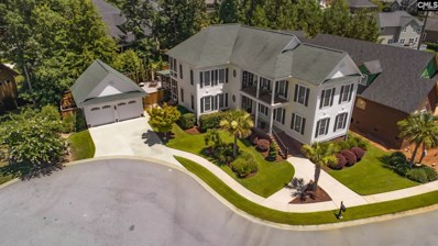 418 Bay Pointe, Lexington, SC 29072 - #: 452374