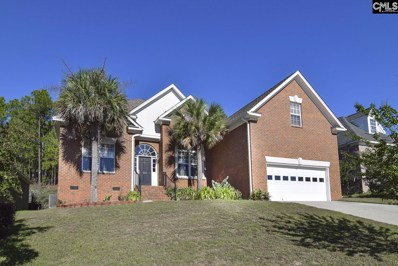 226 Polo Hill Road, Columbia, SC 29223 - #: 456652