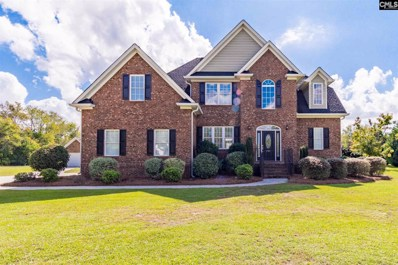 301 Rawl, Lexington, SC 29072 - #: 458345