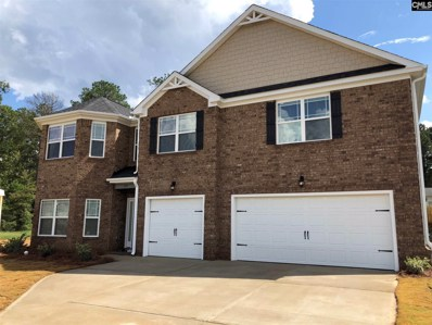 540 Lever Hill Court, Chapin, SC 29036 - #: 462413
