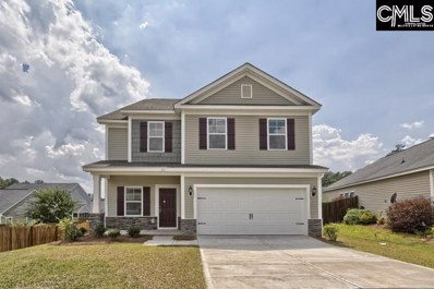 816 Red Solstice Court, Lexington, SC 29073 - #: 462808