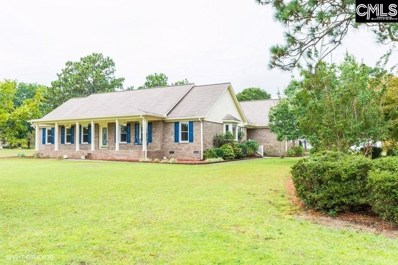 1083 Pepper Ridge Drive, Lugoff, SC 29078 - #: 481338