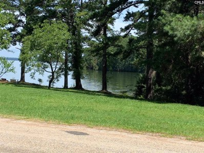 Lakeview Drive, Jenkinsville, SC 29065 - #: 487088
