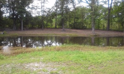 11669 Cottageville Highway, Cottageville, SC 29435 - #: 17016899