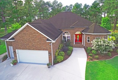 407 Pine Lake Court, Manning, SC 29102 - #: 18017377