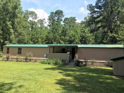 14658 Bells Highway, Lodge, SC 29082 - #: 18019051