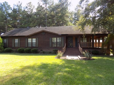 132 Cross Creek Road, Reevesville, SC 29471 - #: 18023154