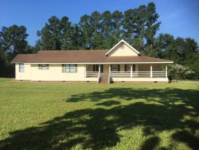 731 Homestead Drive, Lodge, SC 29082 - #: 18023382