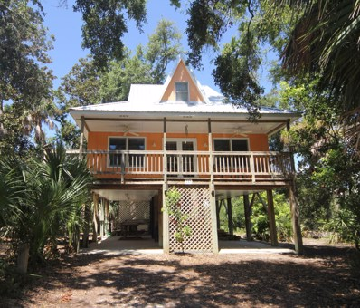 713 Jungle Road, Edisto Beach, SC 29438 - #: 18025346