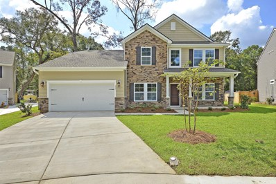 317 Sterlington Way, Charleston, SC 29414 - #: 18025914